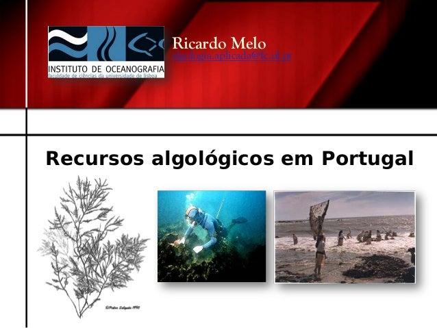 Recursos algológicos em Portugal Ricardo Melo algologia.aplicada@fc.ul.pt