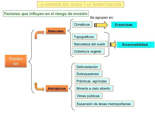 LA EROSIÓN DEL SUELO Y LA DESERTIZACIÓNFactores que influyen en el riesgo de erosión                                      ...