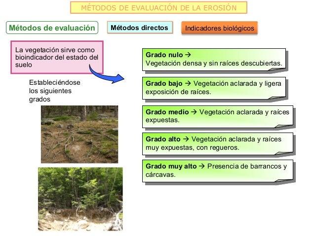 MÉTODOS DE EVALUACIÓN DE LA EROSIÓNMétodos de evaluación          Métodos directos     Indicadores biológicos La vegetació...