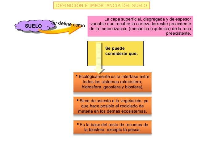 DEFINICIÓN E IMPORTANCIA DEL SUELO                                     La capa superficial, disgregada y de espesor       ...