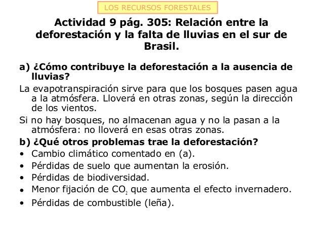 LOS RECURSOS FORESTALES      Actividad 9 pág. 305: Relación entre la   deforestación y la falta de lluvias en el sur de   ...