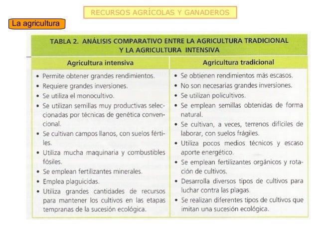 RECURSOS AGRÍCOLAS Y GANADEROSLa agricultura
