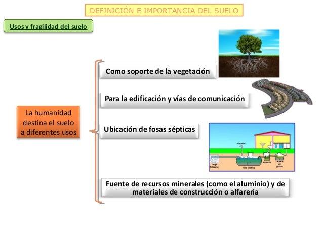 DEFINICIÓN E IMPORTANCIA DEL SUELOUsos y fragilidad del suelo                                 Como soporte de la vegetació...