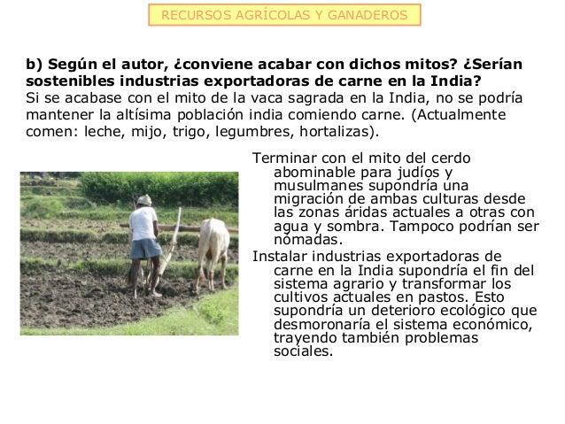 RECURSOS AGRÍCOLAS Y GANADEROSb) Según el autor, ¿conviene acabar con dichos mitos? ¿Seríansostenibles industrias exportad...