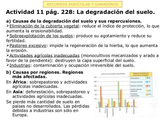 RECURSOS AGRÍCOLAS Y GANADEROSActividad 11 pág. 228: La degradación del suelo.a) Causas de la degradación del suelo y sus ...