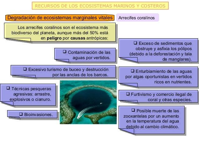 RECURSOS DE LOS ECOSISTEMAS MARINOS Y COSTEROSDegradación de ecosistemas marginales vitales          Arrecifes coralinos  ...