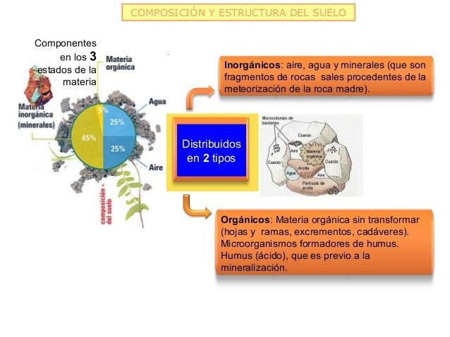 COMPOSICIÓN Y ESTRUCTURA DEL SUELOComponentes     en los 3                                Inorgánicos: aire, agua y minera...
