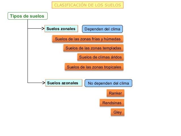 CLASIFICACIÓN DE LOS SUELOSTipos de suelos                  Suelos zonales      Dependen del clima                      Su...