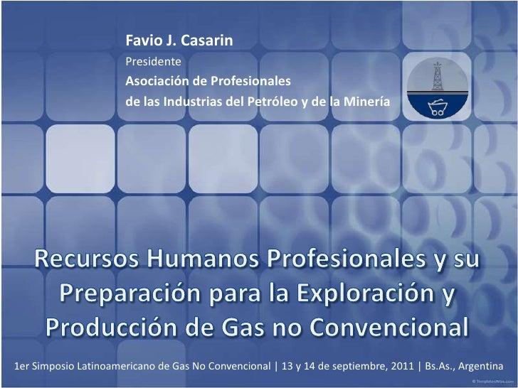 Favio J. Casarin<br />Presidente<br />Asociación de Profesionales <br />de las Industrias del Petróleo y de la Minería <br...