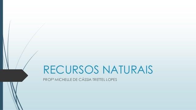RECURSOS NATURAIS PROFª MICHELLE DE CÁSSIA TRETTEL LOPES