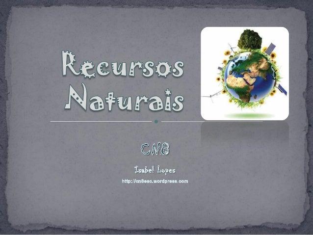 """2IL 2011 """"Os recursos naturais são bens susceptíveis de aproveitamento económico ou de utilização pela Humanidade e que, p..."""