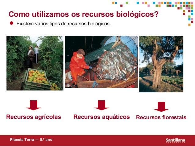 Como utilizamos os recursos biológicos?Existem vários tipos de recursos biológicos.Recursos agrícolasPlaneta Terra — 8.º a...