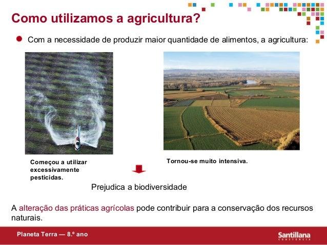 Como utilizamos a agricultura?Com a necessidade de produzir maior quantidade de alimentos, a agricultura:Prejudica a biodi...