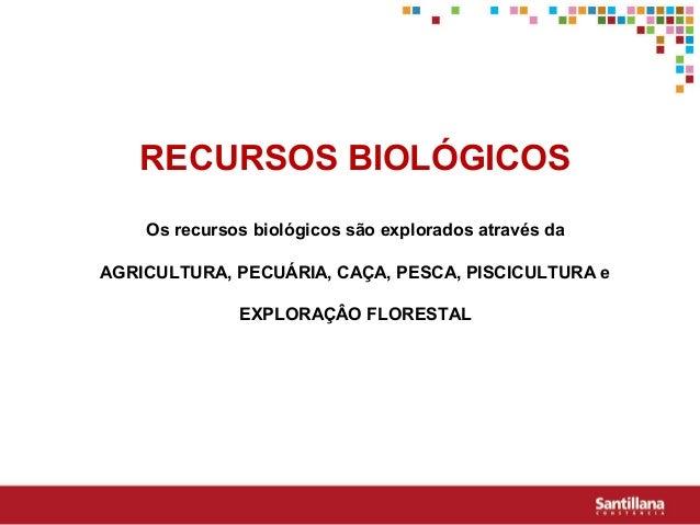 RECURSOS BIOLÓGICOSOs recursos biológicos são explorados através daAGRICULTURA, PECUÁRIA, CAÇA, PESCA, PISCICULTURA eEXPLO...