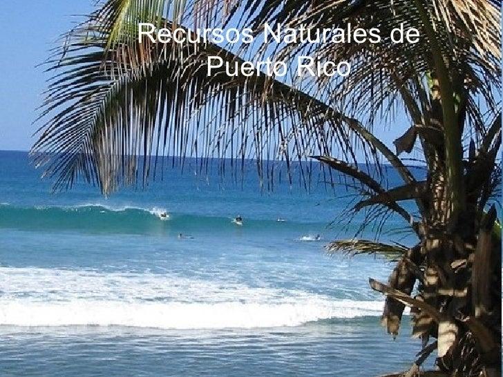 Recursos Naturales de Puerto Rico