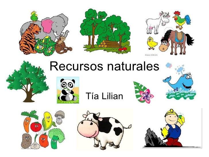 Los recursos naturales son aquellos bienes materiales o servicios proporcionados por la naturaleza sin alteraciones por el hombre. El aire, el petróleo, los minerales, los vegetales, los animales, etc. son ejemplos de los recursos naturales que el hombre puede utilizar.
