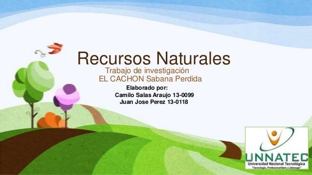 Recursos NaturalesTrabajo de investigaciónEL CACHON Sabana PerdidaElaborado por:Camilo Salas Araujo 13-0099Juan Jose Perez...
