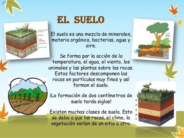 Recursos naturales for Recurso clausula suelo