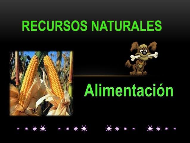 RECURSOS NATURALES Es todo aquello que la naturaleza brinda de manera espontánea, sin que tenga que ver la mano del hombre...
