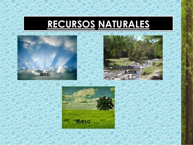 Preservaci n de los recursos naturales y el medio ambiente for Recurso clausula suelo