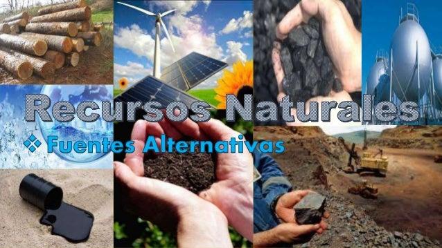  Se denominan recursos naturales a aquellos bienes materiales y servicios que proporciona la naturaleza sin alteración po...
