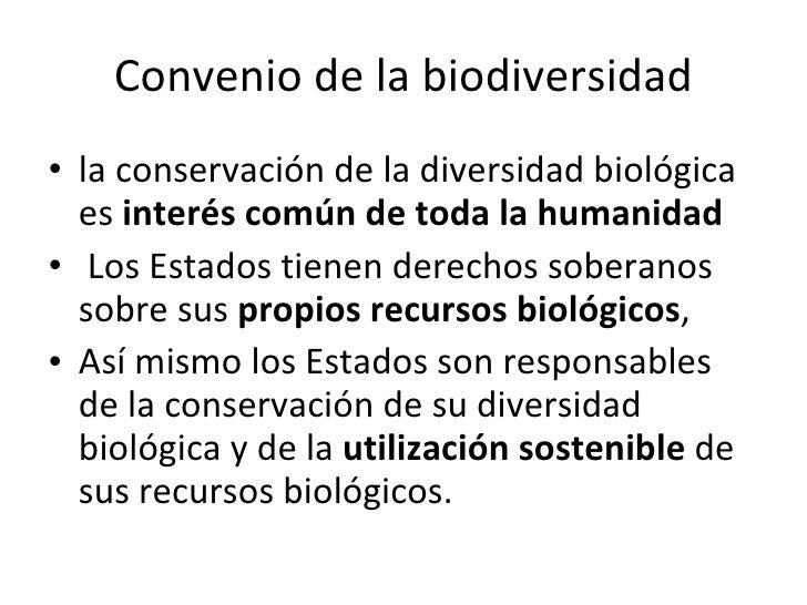 Convenio de la biodiversidad <ul><li>la conservación de la diversidad biológica es  interés común de toda la humanidad </l...