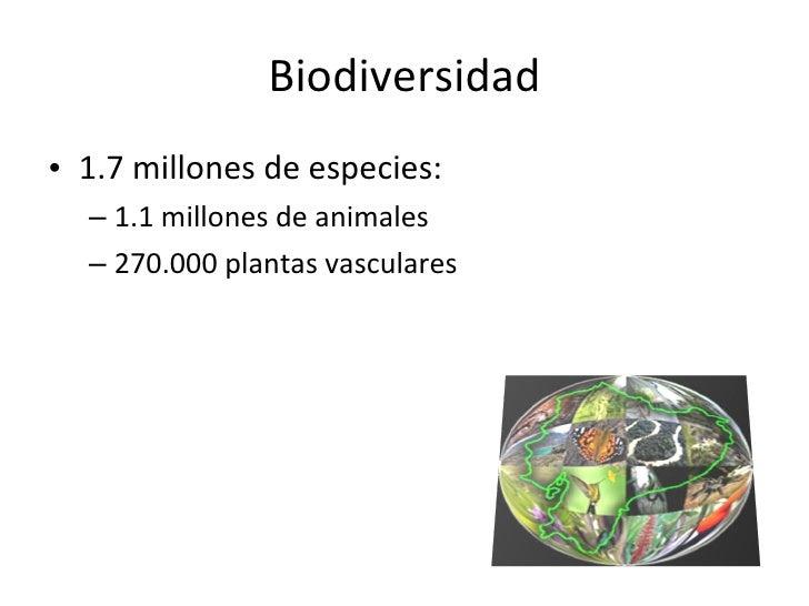 Biodiversidad <ul><li>1.7 millones de especies: </li></ul><ul><ul><li>1.1 millones de animales </li></ul></ul><ul><ul><li>...