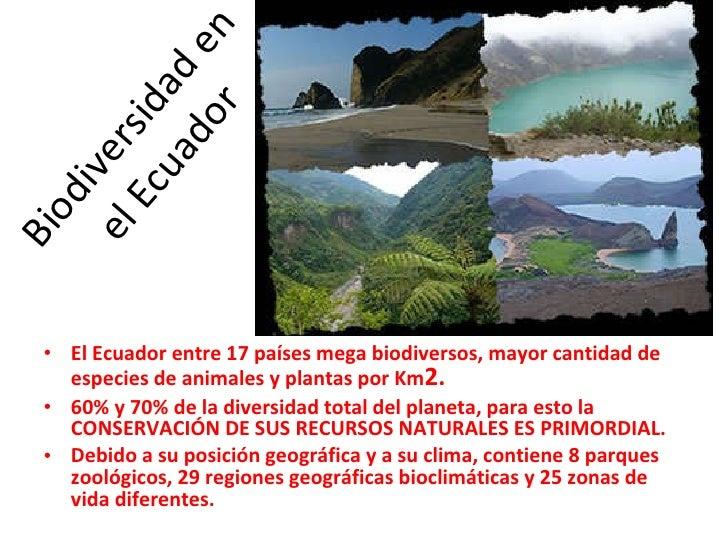 Biodiversidad en el Ecuador <ul><li>El Ecuador entre 17 países mega biodiversos, mayor cantidad de especies de animales y ...