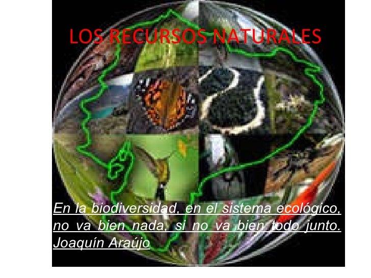 LOS RECURSOS NATURALES En la biodiversidad, en el sistema ecológico, no va bien nada, si no va bien todo junto. Joaquín Ar...