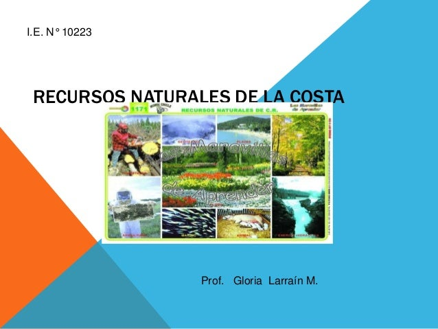 RECURSOS NATURALES DE LA COSTA Prof. Gloria Larraín M. I.E. N° 10223