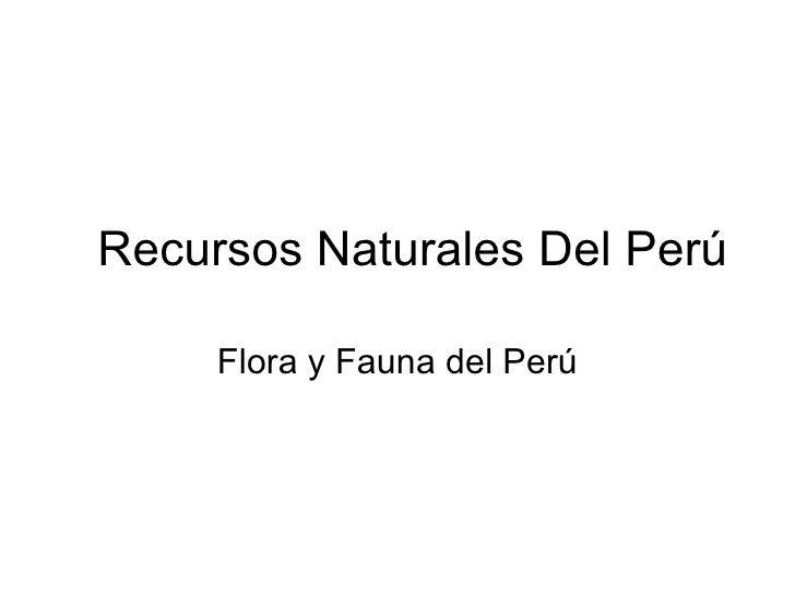 Recursos Naturales Del Perú Flora y Fauna del Perú