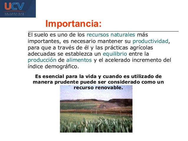 Recurso suelo for Importancia de los suelos