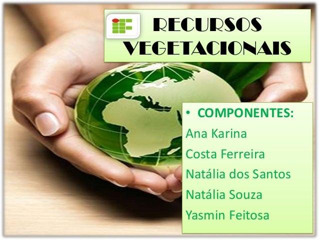 RECURSOSVEGETACIONAIS    • COMPONENTES:    Ana Karina    Costa Ferreira    Natália dos Santos    Natália Souza    Yasmin F...