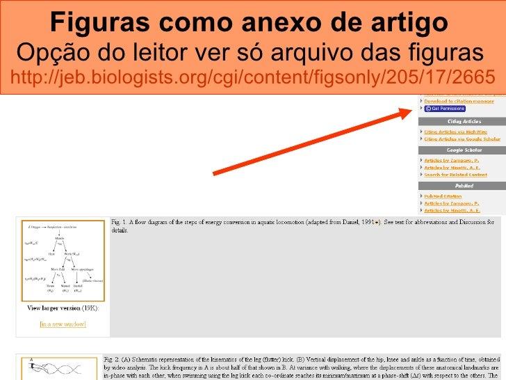 Figuras como anexo de artigo   Opção do leitor ver só arquivo das figuras   http://jeb.biologists.org/cgi/content/figsonly...