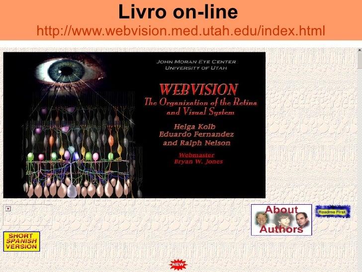 Livro on-line   http://www.webvision.med.utah.edu/index.html