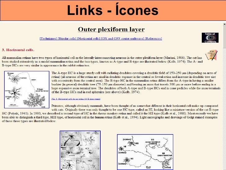 Links - Ícones