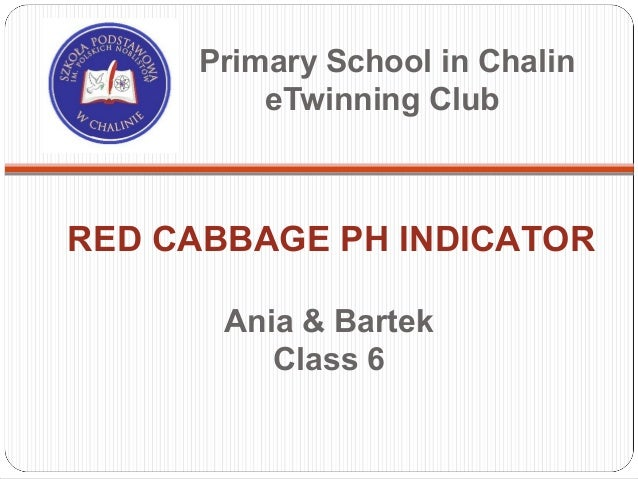 Primary School in Chalin         eTwinning ClubRED CABBAGE PH INDICATOR       Ania & Bartek          Class 6