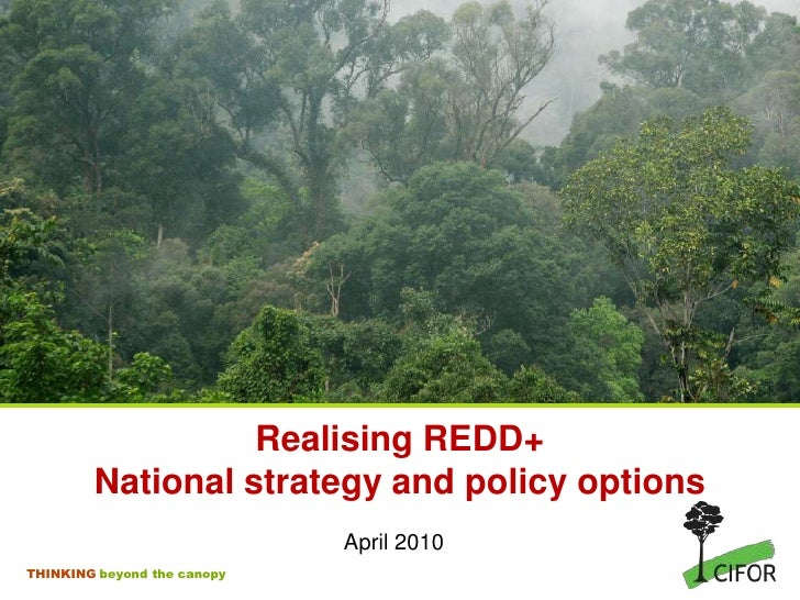 RealisingREDD+National strategy and policy options<br />April 2010<br />