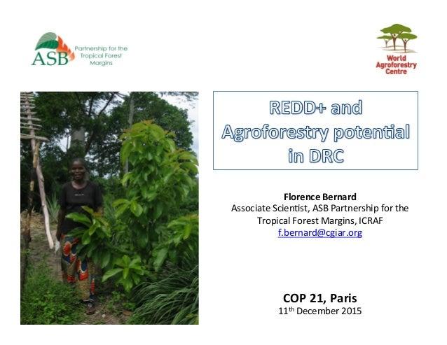 COP21,Paris 11thDecember2015 FlorenceBernard AssociateScien5st,ASBPartnershipforthe TropicalForestMargins,...