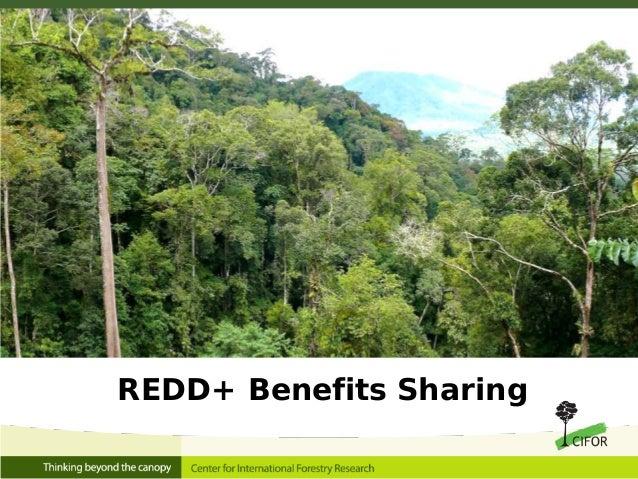 REDD+ Benefits Sharing