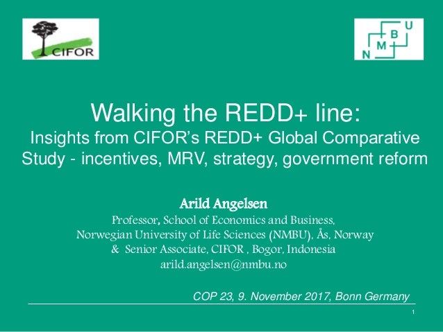 Walking the REDD+ line: Insights from CIFOR's REDD+ Global Comparative Study - incentives, MRV, strategy, government refor...