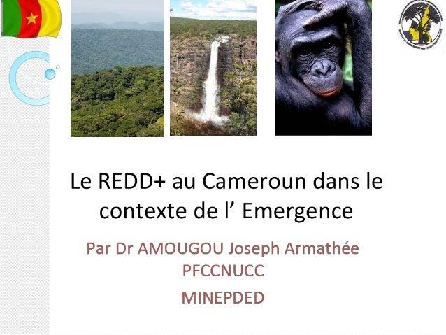 plan de l'exposé Définitions des concepts:  Concept de l' Emergence;  Concept REDD+; Emergence et Changement Climatiqu...