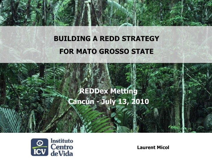 BUILDING A REDD STRATEGY <br />FOR MATO GROSSO STATE<br />REDDexMetting<br />Cancún - July 13, 2010<br />Laurent Micol<br />