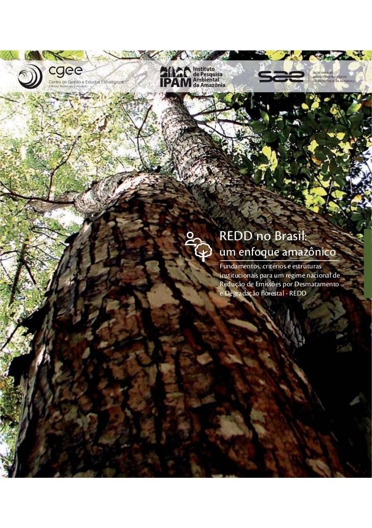 REDD no Brasil:um enfoque amazônicoFundamentos, critérios e estruturasinstitucionais para um regime nacional deRedução de ...