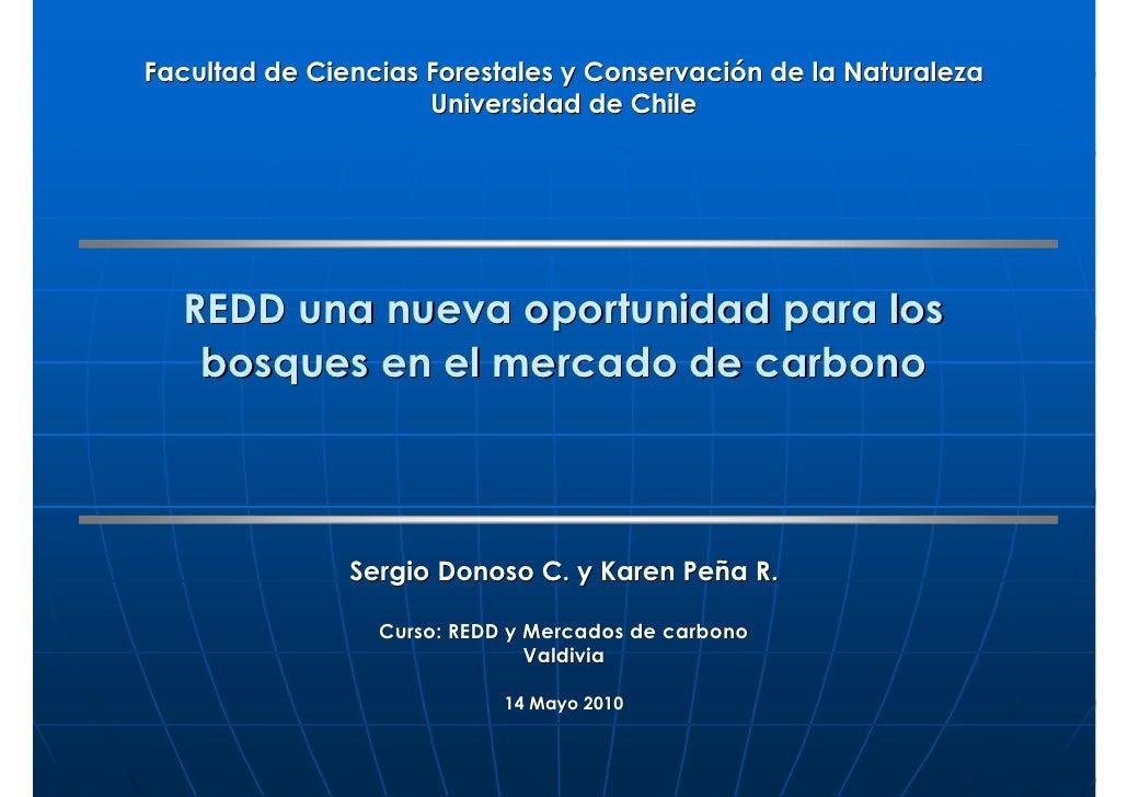 Facultad de Ciencias Forestales y Conservación de la Naturaleza                      Universidad de Chile       REDD una n...