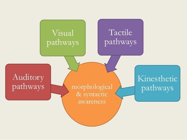 morphological & syntactic awareness Auditory pathways Visual pathways Tactile pathways Kinesthetic pathways