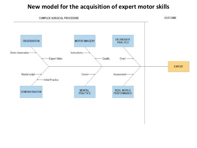 New model for the acquisition of expert motor skills