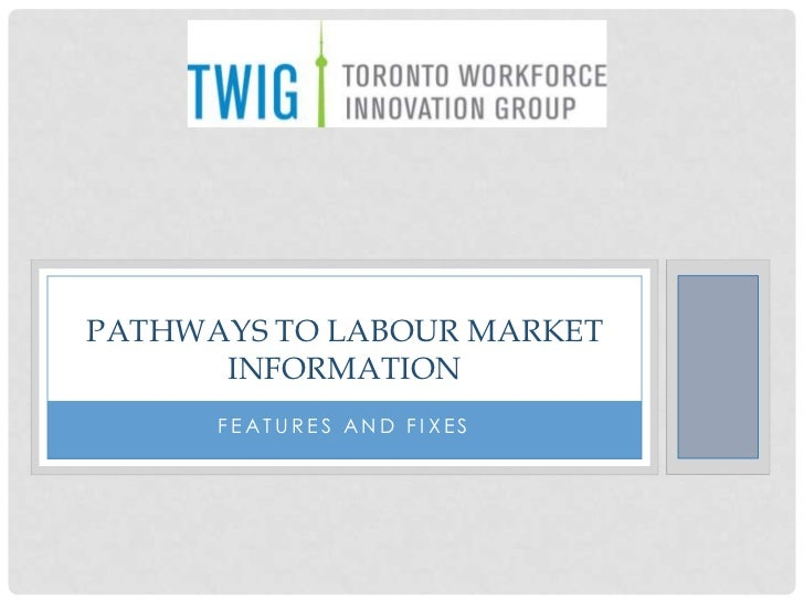 PATHWAYS TO LABOUR MARKET      INFORMATION      FEATURES AND FIXES