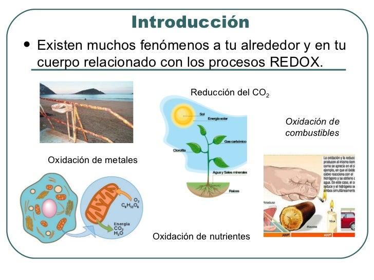 Introducción <ul><li>Existen muchos fenómenos a tu alrededor y en tu cuerpo relacionado con los procesos REDOX. </li></ul>...