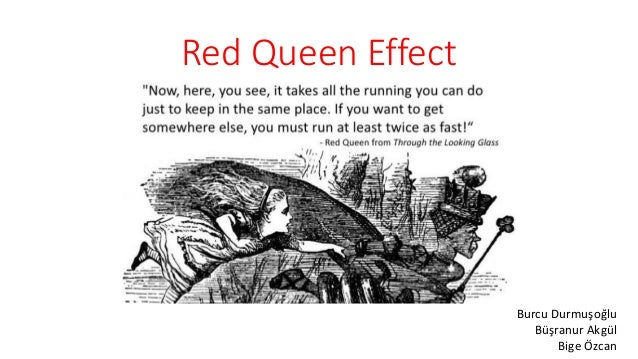Red Queen Effect and Blue Ocean Strategy